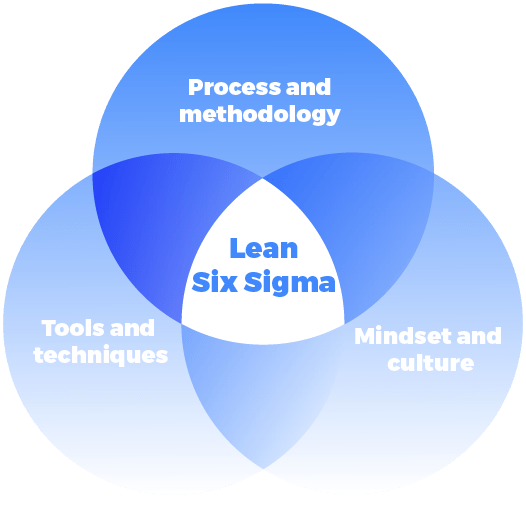 Lean six sigma elements