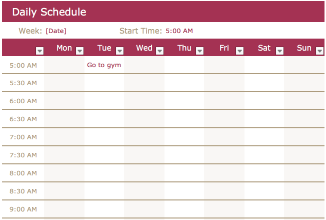 DailySchedule.png