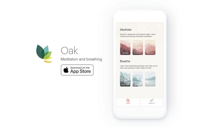 best-tools-for-freelancers-oak-meditation