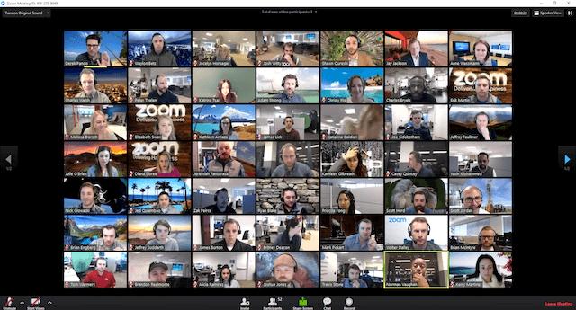 Zoom team call