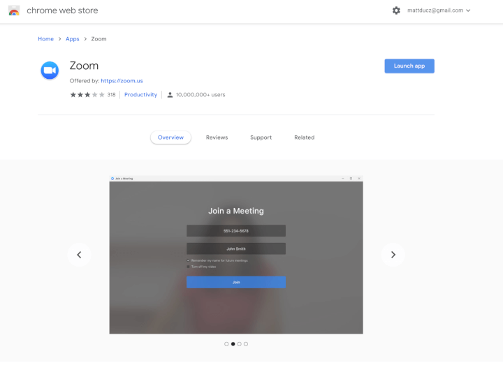 zoom chrome web store