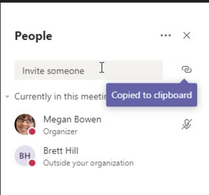 Microsoft Teams - participant panel segment>