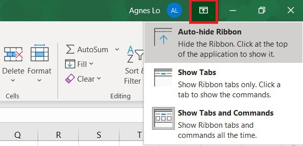 The Excel ribbon