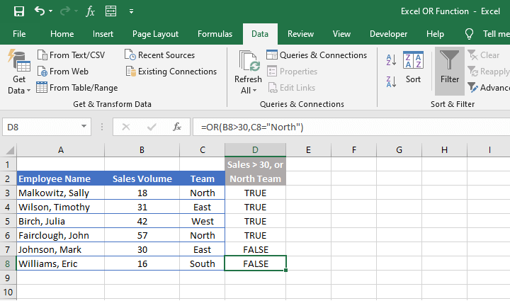 Excel OR function - filter feature