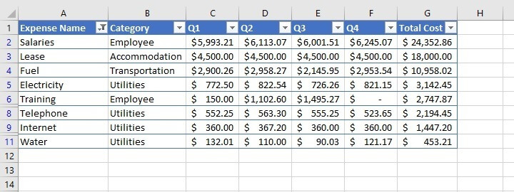 How to filter in Excel