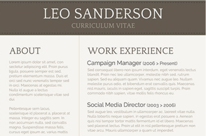 minimalist resume template word